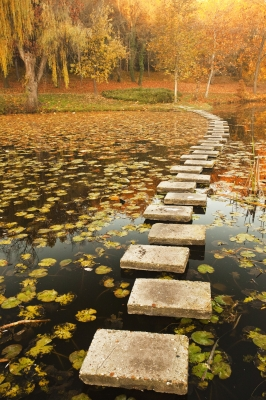stepping stones across a lake
